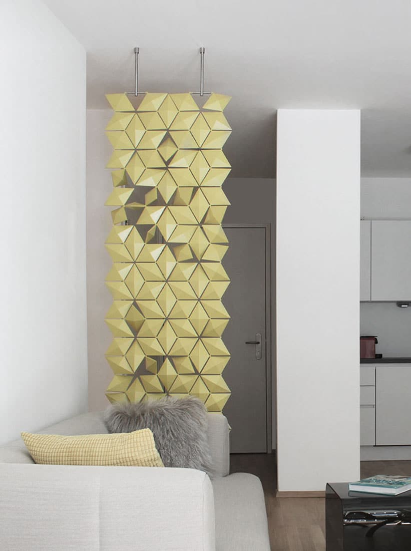 Small Room Divider Screen at the apartment entrance